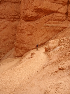 If this guy's walking to Vermont, he's certainly taking the long way (through Bryce Canyon in Utah.)